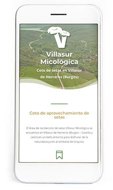 Villasur micológica